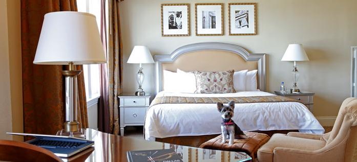 Pink Traveler Warwick Melrose Hotel